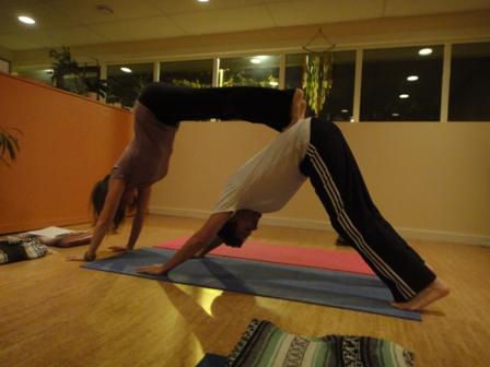 Partner Yoga Cancelled This Sunday February 17 1 3 Pm